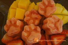 MangoBerry Pawsicles from Sugar the Golden Retriever