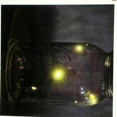 Fireflies in a jar