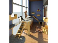 RFA | Veterinary Hospital Design & Animal Shelter Design