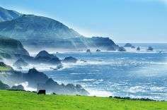 West Coast! Our World, Beautiful World, West Coast, This Is Us, Earth, Architecture, Water, Photography, Outdoor