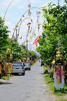 """Penjor - lining the road during Galungan, a unique 10 day celebration commemorating good over evil, ending in Kuningan. The streets of Ubud are flooded with school children parading & performing """"Barong"""" dances. Barong is a lion-like creature in the mythology of Bali. He is the king of the spirits, leader of the hosts of good, and enemy of Rangda, the demon queen and mother of all spirit guarders in the mythological traditions of Bali."""