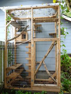 tall cat run up against the side of a house; there are lots of shelves in it and it has a fiberglass roof