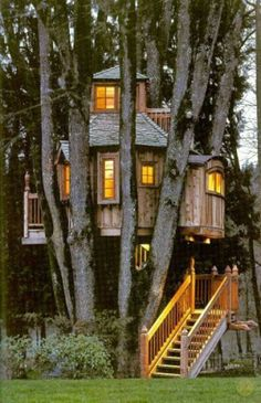 I always wanted a tree house, but my dad never built one. So my brother & I just played in the three trees in our backyard. We imagined they were so many different things. Way better then any tree house. Beautiful Tree Houses, Cool Tree Houses, Beautiful Homes, Beautiful Places, Small Houses, Future House, In The Tree, 10 Tree, Play Houses