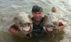 Two big ones caught.