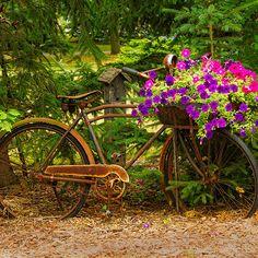 ensphere:    The Bike Stops Here - Niagara