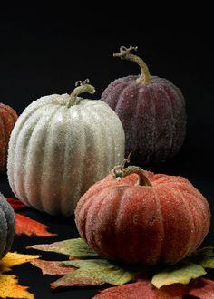 Sugared Decorative Pumpkins For Fall, Halloween, & Thanksgiving Decor