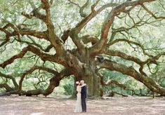 Charleston Weddings magazine fall-winter 2016 / photograph by Faith Teasley Photography