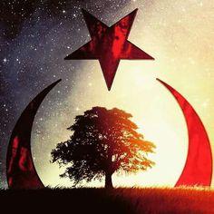 TURKEY  ⚓ByDiver969⚓