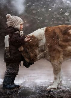 !!! I love big dogs, and little people :)