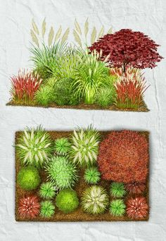 Beet ganz einfach anlegen & gestalten Simple grass garden Grasses are very trendy and provide a reflection of the seasons in the smallest of spaces. In particular, hard structures in the background su