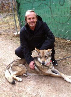 """Miguel Bose: Rueda video de """"Encanto"""" Miguel Bose, Videos, Husky, Cinema, Actors, Dogs, Animals, Movies, Truths"""