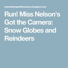 Run! Miss Nelson's Got the Camera: Snow Globes and Reindeers