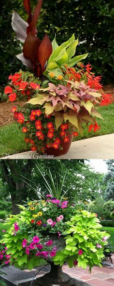 Garden Landscaping - 24 stunning container garden designs with PLANT LIST for each! Lots of designer tips on selecting the best mix of flower plants and creating a beautiful colorful garden which blooms all season with these planting recipes! Container Flowers, Flower Planters, Garden Planters, Flower Pots, Flower Ideas, Full Sun Container Plants, Porch Planter, Succulent Containers, Fall Planters