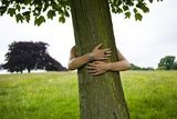 Do You Know How to Hug a Tree?