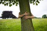 Do You Know How to Hug a Tree?