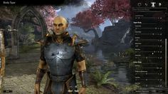 Pix For > Elder Scrolls Online Character Creation Class