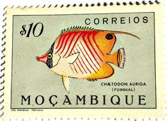 stamp from Mozambique