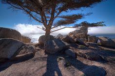 Monterey, California California Baby, Monterey California, Southern California, Cannery Row, Monterey Bay Aquarium, Carmel By The Sea, Pebble Beach, Big Sur, Dusk