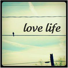 Love life!