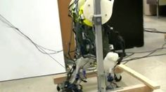 US experts have developed what they say are the most biologically-accurate robotic legs yet.    Writing in the Journal of Neural Engineering, they said the work could help understanding of how babies learn to walk - and spinal-injury treatment.    They created a version of the message system that generates the rhythmic muscle signals that control walking.
