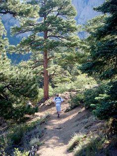La Luz Trail, Sandia Mountains, Albuquerque, NM