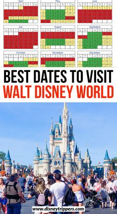 Disney World is packed with events no matter what time of the year it is. We have created this Disney World crowd calendar to help you plan your visit! Disney World Florida, Florida Travel, Walt Disney World, Disney Disney, Disney Travel, Disney Bound, Disney Parks, Disney Crowds, Disney Trips