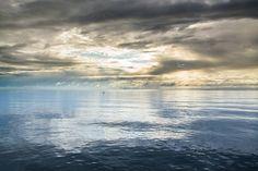 morźne piekno Zatoki Gdańskiej