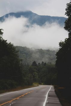 Road trip photography by Emily Boyer. This looks like a lovely place for a drive.
