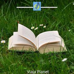 El mundo es un libro, y aquellos qye no viajan, solo leen una pagina Travel Quotes, Family Travel, Things To Do, Book, Viajes