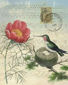 This is one of my favorites on BELLAVINTAGEHOME: Botanical Print Hummingbird with Nest