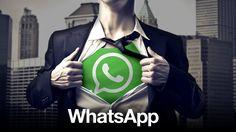 Smartphone-Nutzer lieben WhatsApp: Auf jede SMS kommen knapp 17…