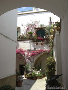 Secret gardens in old Gallipoli, Puglia Southern italy