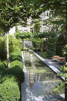 Gardening In The City fabulous design for a long narrow garden - contemporary rill water feature with soft shading greenery Garden Pool, Water Garden, Garden Landscaping, Shade Garden, Pool Water Features, Water Features In The Garden, Landscape Architecture, Landscape Design, Narrow Garden
