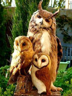 Nature Animals, Felt Animals, Animals And Pets, Baby Animals, Funny Animals, Cute Animals, Felt Owls, Felt Birds, Plush Animals