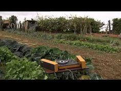 L'Esprit des Plantes - Documentaire 2015