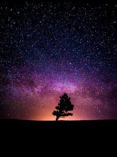 Dove vanno a finire tutte le parole d'amore non dette, i sospiri trattenuti, i desideri inespressi. In quale mondo troveranno rifugio. Quale stella li illuminerà senza che abbiano più timore di venire alla luce. Ci sarà pure un posto nell'universo, perché è lì che voglio andare.