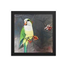 The Parrot, framed print - 10×10