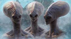 Risultati immagini per grigi alieni