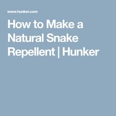 How to Make a Natural Snake Repellent | Hunker