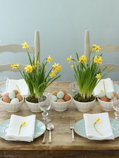 A simple tabletop with miniature daffodils.
