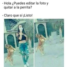 Best Memes, Dankest Memes, Funny Images, Funny Pictures, Funny Adult Memes, Humor Mexicano, Funny Spanish Memes, Shawn Mendes Memes, Humor Grafico