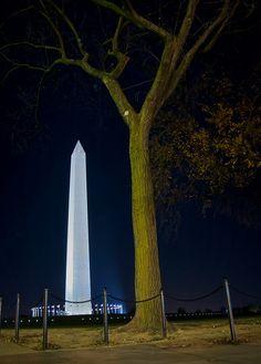Washington monument in Washington D.C. on a winter night