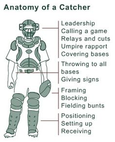 Anatomy of a Catcher.I miss softball & catching! Softball Drills, Softball Coach, Softball Mom, Fastpitch Softball, Softball Stuff, Softball Players, Softball Things, Softball Gear, Softball Cheers