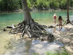 Guadalupe River, Canyon Lake, Texas