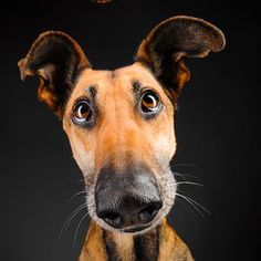 Photo Noodles and bubbles by Elke Vogelsang on 500px