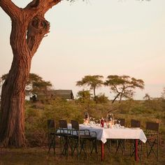 Dinner in the African bush ...