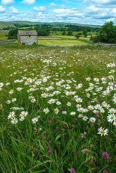 wanderthewood: Barn near Linton, Yorkshire, England by Eeee Bi Gum on Flickr — FUCKITANDMOVETOBRITAIN