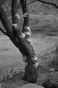 creepy hands surrounding Tree horror fineart edit ( snj99999 ) - Find me here as well -  facebook.com/snj99999  twitter.com/daylearnings  instagram.com/gunny2008  500px.com/snj9999  flickr.com/photos/saurabh99/