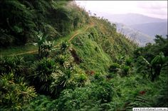 One of the great treks in the world -- the Kokoda Trail, Papua New Guinea