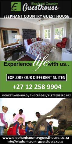 Elephant Country House, an affordable luxury guest house close to Plettenberg Bay in South Africa borders the malaria-free Elephant Sanctuary where elephants graze at your doorstep. Elephant Sanctuary, Close To Home, Elephants, Great Places, South Africa, Explore, Country, Luxury, House